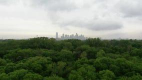 Вид с воздуха горизонта леса города акции видеоматериалы