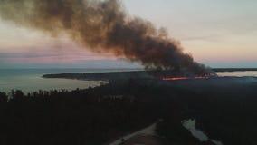 Вид с воздуха горящего огня в тропических джунглях в экзотическом карибском курорте Вертолет огня спасения собирает воду в море сток-видео