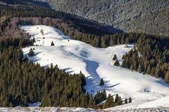 Вид с воздуха гребня горы над снегом покрыл лес Стоковые Изображения