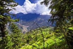 Вид с воздуха долины Kullu Naggar, Himachal Pradesh Северный Ind Стоковое Изображение RF