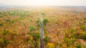 Вид с воздуха дороги в лесе осени на заходе солнца Изумительный landscap Стоковые Изображения RF