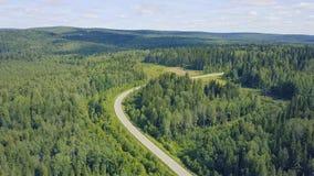 Вид с воздуха дороги в осени окруженной зажимом леса сосны Взгляд сверху дороги в лесе Стоковые Фотографии RF