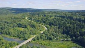 Вид с воздуха дороги в осени окруженной зажимом леса сосны Взгляд сверху дороги в лесе Стоковые Изображения RF