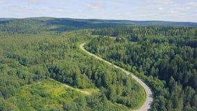 Вид с воздуха дороги в осени окруженной зажимом леса сосны Взгляд сверху дороги в лесе Стоковые Фото
