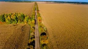 Вид с воздуха дороги осени поля вид с воздуха Стоковое фото RF