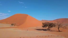 Вид с воздуха дюны 45, Sossusvlei Намибия видеоматериал