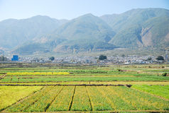 Вид с воздуха красивейших домов на Lijiang в Китае Стоковые Фотографии RF
