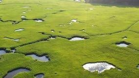 Вид с воздуха красивого соленого болота на треске накидки сток-видео