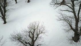 Вид с воздуха ландшафта зимы видеоматериал