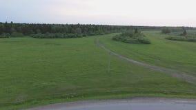 Вид с воздуха ландшафта леса в Сибире сток-видео