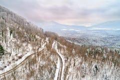 Вид с воздуха леса в горах Вогезы alsace Франция стоковые фото