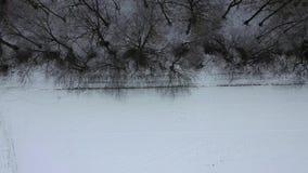 Вид с воздуха леса зимы с glade акции видеоматериалы