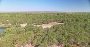 Вид с воздуха леса и озера видеоматериал
