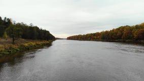 вид с воздуха Летать над рекой день осени красивейший Камера летает косая низкая над поверхностью воды 4K сток-видео