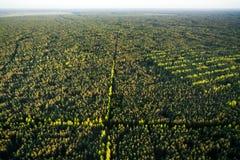 Вид с воздуха литовской пущи Стоковые Изображения RF