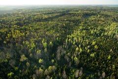 Вид с воздуха литовской сельской местности на весне Стоковое Изображение RF