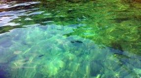 Вид с воздуха моря поверхностный кристалла - ясная зеленая бирюза струилась морская вода и clownfish для предпосылки, Krabi, море Стоковые Изображения RF