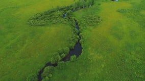 Вид с воздуха над природой Амазонкой 4k лета зеленого цвета плодородной земли ландшафта дороги леса River Valley красивой видеоматериал