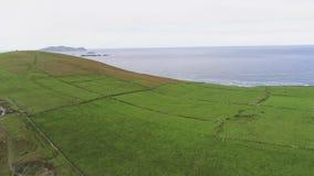 Вид с воздуха над типичными злаковиками Ирландии стоковая фотография rf