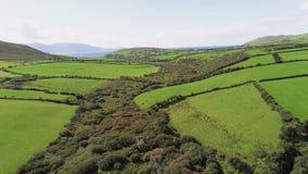 Вид с воздуха над типичным ирландским ландшафтом на солнечный день стоковая фотография