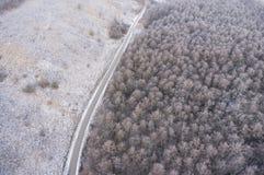 Вид с воздуха на дороге и ландшафт леса в зиме приправляют Стоковое фото RF