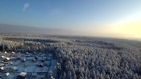 Вид с воздуха на заходе солнца в снежностях Деревня около лесных деревьев поля и зимы, дороги и крыш коттеджей в снеге сток-видео