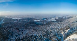Вид с воздуха на лесе зимы стоковое изображение rf