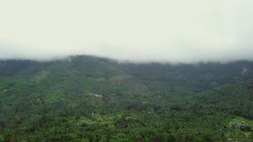 Вид с воздуха облаков двигая над сочными зелеными тропическими необжитыми дождливыми днями hillsin Нетронутая экзотическая природ сток-видео