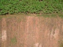 Вид с воздуха обрабатываемой земли, взгляд трутня природы ландшафта обрабатываемой земли стоковая фотография