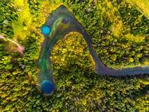 Вид с воздуха озер karst Стоковые Фото