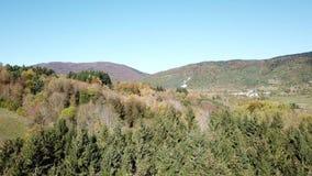 Вид с воздуха осенних леса и луга в pyrenean горах, Франции видеоматериал