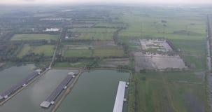 Вид с воздуха от abovee Nakhon Nayok сток-видео