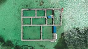 Вид с воздуха парка карибского моря и острова бассейна дельфина в воде сток-видео
