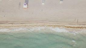 Вид с воздуха песчаного пляжа Miami Beach сток-видео
