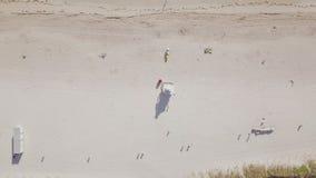 Вид с воздуха песчаного пляжа Miami Beach акции видеоматериалы
