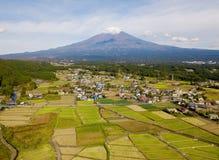 Вид с воздуха поля горы и риса Фудзи в полдень в Fujikawag стоковые изображения rf