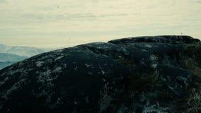 Вид с воздуха приполюсного ландшафта видеоматериал