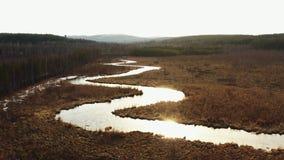 Вид с воздуха реки в форме змейки в поле видеоматериал