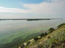 Вид с воздуха реки Зеленые водоросли на поверхности воды зацветая вода как последствие структуры запруды и стоковое изображение