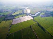 Вид с воздуха риса обрабатывает землю в свете и тумане утра Стоковое Изображение