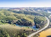 Вид с воздуха рощ оранжевого дерева на холмах и красочных озерах, s Стоковые Изображения RF