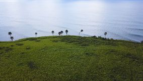 Вид с воздуха сахарного тростника fields на побережье St Китс стоковое изображение