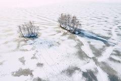 Вид с воздуха снега зимы покрыл захваченные лес и замороженное озеро сверху с трутнем стоковые изображения