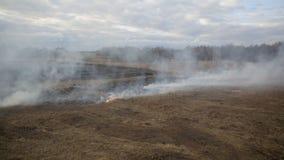 Вид с воздуха сухой травы горя на обрабатываемой земле акции видеоматериалы
