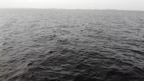 Вид с воздуха трутня идет на море/кинематографическое вступление фильма сток-видео
