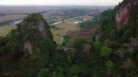 Вид с воздуха холма на Kedah Малайзии акции видеоматериалы