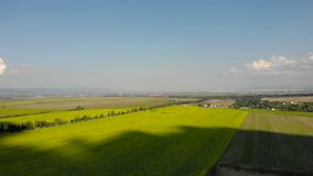 Вид с воздуха - цветя солнцецветы поле l солнцецветы акции видеоматериалы