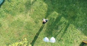 Вид с воздуха человека оператора трутня стоя с remote управления на траве пока трутень кладет на солнечные очки на его стороне сток-видео