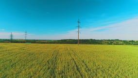 Вид с воздуха широких полей с урожаями и электрическими поляками в сельском районе 4K