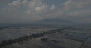 Вид с воздуха Beaeutiful Alor Setar Kedah Малайзии около Masjid Захира от взгляда сверху акции видеоматериалы